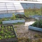 Early Garden | Construction - 2006