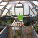 Green House | Construction - 2006